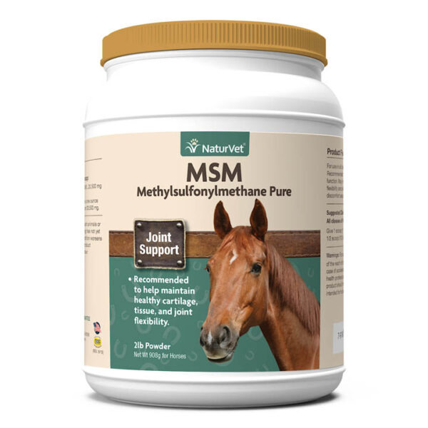 MSM Pure Powder for Horses
